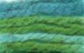 5511-caribe