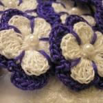 lilys flowers