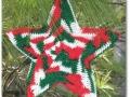 holiday star (2)
