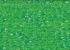 225 lemon Green