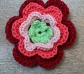 roses sinfonia flower