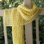 Sunshine on My Shoulder Wrap #2