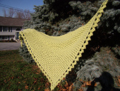 Alien_Abduction_Shawl_001_medium2