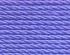 79 blue violet