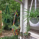 sharons no 18 plant hangers