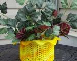 yellow basket