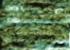 1105 bosque