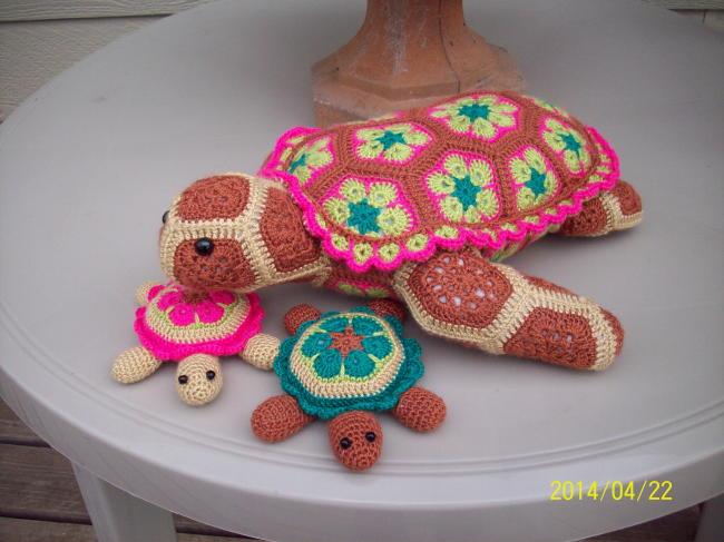 Virginias Sol turtles